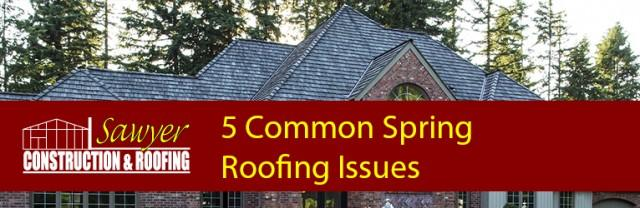 common-spring-roofing-issues